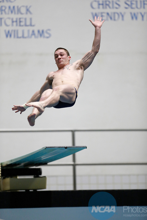 12 MAR 2016: Collin Vest, of Clarion, dives in the Mens's 3-meter finals during the Division II Men's and Women's Swimming & Diving Championship held at IU Natatorium in Indianapolis, IN.  Queens (NC) won the Men's championship with 449 points.  AJ Mast/NCAA Photos