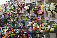 FLOWER COVERED GRAVES at the local cemetery during the DEAD OF THE DEAD - SAN MIGUEL DE ALLENDE, MEXICO..