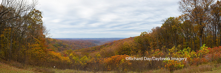 63995-00902 Fall color at overlook, Brown County State Park, IN