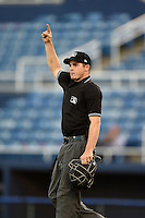Home plate umpire Drew Freed signals a home run during a game between the Lynchburg Hillcats and Salem Red Sox on April 25, 2014 at Lewisgale Field in Salem, Virginia.  Salem defeated Lynchburg 10-0.  (Mike Janes/Four Seam Images)