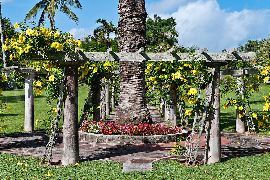 Formal garden with arbor, Palm Grove Gardens, Devonshire, Bermuda
