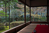 A view of the trees and clipped bushes from the viewing gallery at the Hosen-in Temple, near Kyoto