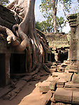 Temples of Angkor Wat, Cambodia