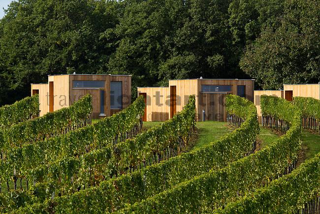 Wohnothek, Weinberg, wine yard, Deutsch-Schützen, Burgenland, Austria, Österreich