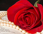Red rose and white pearls lay on a poetry book.