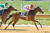 Stormy Princess winning at Delaware Park on 9/15/16