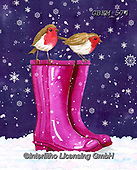 Kate, CHRISTMAS ANIMALS, WEIHNACHTEN TIERE, NAVIDAD ANIMALES, paintings+++++Robins on wellies 2.,GBKM574,#xa#