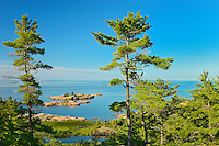 White pines and Georgian Bay<br /> <br /> Killarney Provincial Park<br /> Ontario<br /> Canada