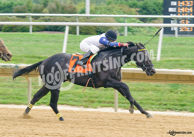 Dragon Attack winning in at Delaware Park on 9/25/15