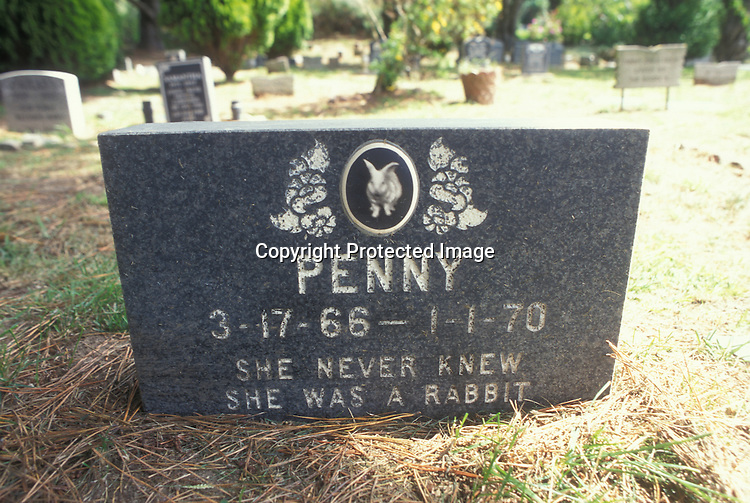 "Here lies a rabbit named, ""Penny"", who passed away in 1970, and was laid to rest in Pet's Rest Colma, CA cemetery."