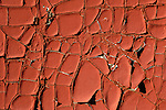 Cracked paint on tar paper shed.