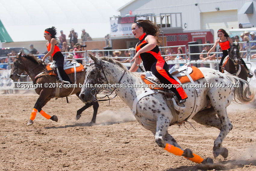The Ram Rodeo in Orangeville, Ontario, Canada .20, 21,& 22 July,  2012.photo by Norm Betts, ©2012.normbetts@canadianphotographer.com.416 460 8743The Ram Rodeo in Orangeville, Ontario, Canada .20, 21,& 22 July,  2012.photo by Norm Betts, ©2012.normbetts@canadianphotographer.com.416 460 8743