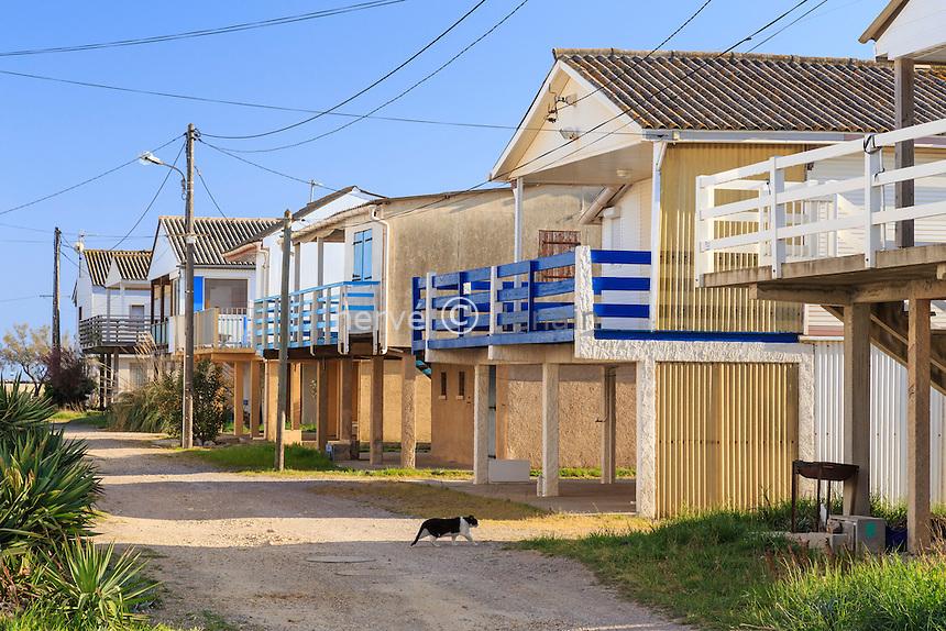 France, Aude (11), Gruissan, le quartier de Gruissan-Les Chalets, chalets sur pilotis // France, Aude, Gruissan, Gruissan-Les Chalets, cottages on stilts