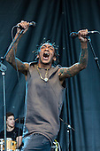 May 26, 2013: TRICKY - Festival in Toulouse France