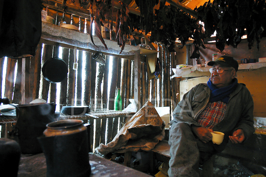 Elder Peter Tizya enjoys a cup of tea as he takes a break from watching for caribou in his hut at his camp along the Porcupine River, near Old Crow, Yukon Territory, Canada. Tizya spends several weeks at the riverside camp while the caribou are in the area.