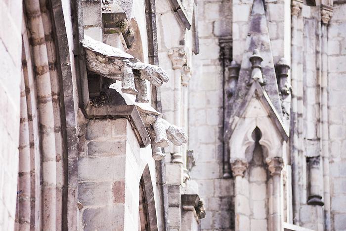 turtles carved on la basilica church city of quito ecuador south