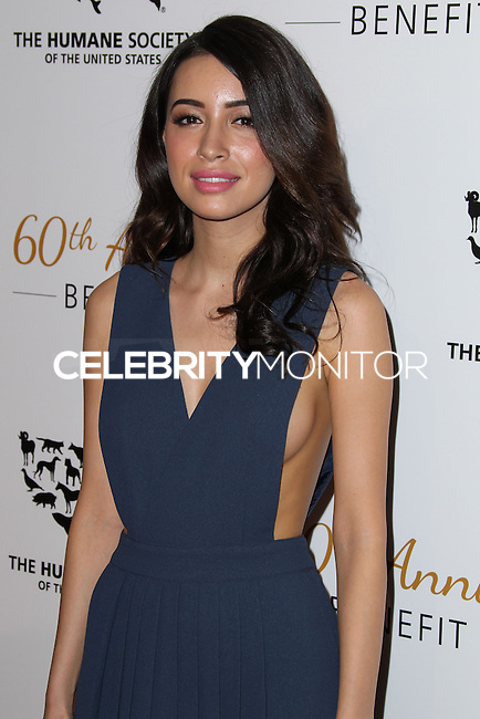BEVERLY HILLS, CA, USA - MARCH 29: Christian Serratos at The Humane Society Of The United States 60th Anniversary Benefit Gala held at the Beverly Hilton Hotel on March 29, 2014 in Beverly Hills, California, United States. (Photo by Xavier Collin/Celebrity Monitor)