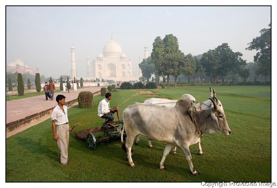 Inde<br /> Le Taj Mahal.