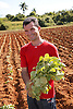 Man with tobacco seedlings about to be planted on farm near Vinales; Cuba,