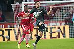 08.11.2019, RheinEnergieStadion, Koeln, GER, 1. FBL, 1.FC Koeln vs. TSG 1899 Hoffenheim,<br />  <br /> DFL regulations prohibit any use of photographs as image sequences and/or quasi-video<br /> <br /> im Bild / picture shows: <br /> Jhon Córdoba (FC Koeln #15),   im Zweikampf gegen  Kevin Vogt (Hoffenheim #22),  <br /> <br /> Foto © nordphoto / Meuter
