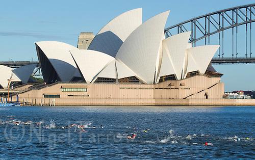 10 APR 2011 - SYDNEY, AUS - Competitors swim past the Sydney Opera House during the ITU World Championship Series age group triathlon in Sydney, Australia  (PHOTO (C) NIGEL FARROW)
