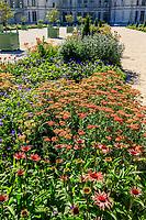 France, Loire-et-Cher (41), Chambord, château de Chambord, les jardins à la française, parterre de plantes vivaces (Achillée millefeuille, Echinacea, Geranium) bordé de fusains et topiaires d'if