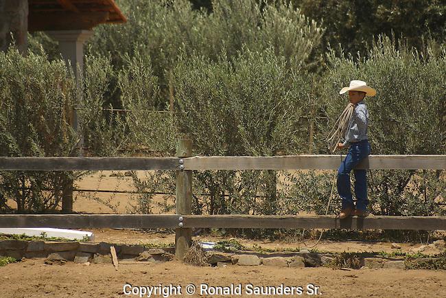 YOUNG COWBOY at a RODEO