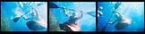 USA, California, Forks of Salmon, kayaker under water, Salmon River Forks of Salmon, Otter Bar Kayaking School