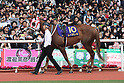 Reine Minoru,<br /> APRIL 9, 2017 - Horse Racing :<br /> Reine Minoru is led through the paddock before the Oka Sho (Japanese 1000 Guineas) at Hanshin Racecourse in Hyogo, Japan. (Photo by Eiichi Yamane/AFLO)