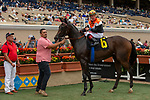 DEL MAR, CA  SEPTEMBER 3: #6 Summering, ridden by Drayden Van Dyke, in the winners circle after winning wins the Del Mar Juvenile Fillies Turf on September 3, 2018, at Del Mar Thoroughbred Club in Del Mar, CA.(Photo by Casey Phillips/Eclipse Sportswire/Getty Images)