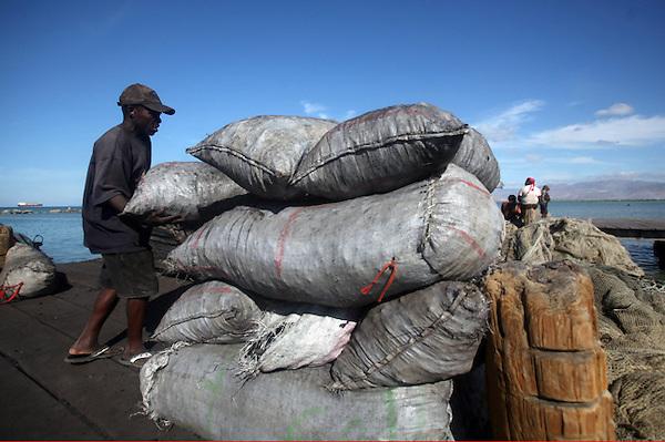 (((SERIE GRÁFICA:1 DE 8))) HAI21. PUERTO PRÍNCIPE (HAITÍ), 31/01/2012.- Un hombre descarga sacos de carbón desde un barco, en el muelle del barrio Cité Soleil, en Puerto Príncipe (Haití) hoy, martes 31 de enero de 2012. El carbón es el principal combustible para cocina en Haití, y República Dominicana denuncia permanentemente que existe un tráfico de carbón desde su país, y que sus bosques están siendo depredados para este comercio. EFE/Orlando Barría..