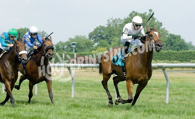 Daylight Ride winning at Delaware Park on 7/9/12