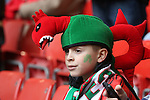 A patriotic Wales rugby fan in fancy dress.<br /> RBS 6 Nations<br /> Wales v Ireland<br /> Millennium Stadium<br /> 14.03.15<br /> &copy;Steve Pope - SPORTINGWALES