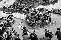 Sander Armée (BEL/Lotto-Soudal) up the gravel roads of the Colle delle Finestre <br /> <br /> stage 19: Venaria Reale - Bardonecchia (184km)<br /> 101th Giro d'Italia 2018