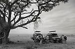 Safari Life - G