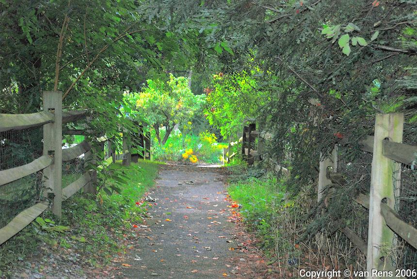 Arbored Path