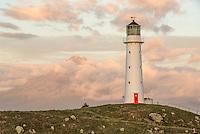 Cape Egmont lighthouse, Taranaki Region, North Island, New Zealand, NZ