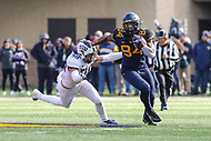 Morgantown, WV - November 10, 2018: West Virginia Mountaineers tight end Jovani Haskins (84) catches a pass during the game between TCU and WVU at  Mountaineer Field at Milan Puskar Stadium in Morgantown, WV.  (Photo by Elliott Brown/Media Images International)