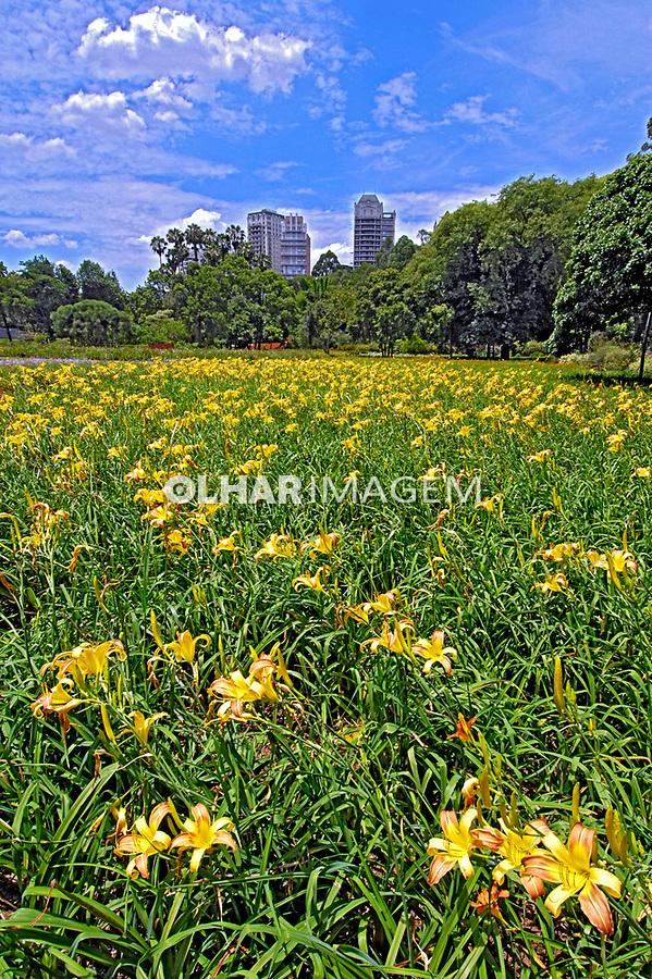 Viveiro de plantas Manequinho Lopes. Parque do Ibirapuera. São Paulo. 2007. Foto Juca Martins.