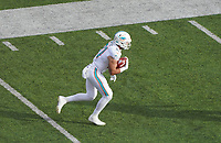 tight end Durham Smythe (81) of the Miami Dolphins - 08.12.2019: New York Jets vs. Miami Dolphins, MetLife Stadium New York