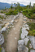Scree wall along the Baldface Circle Trail during the summer months in the White Mountains, New Hampshire. Scree walls are built on the edge of trails to discourage hikers from going off trail. Building these small walls helps protect the fragile alpine habitat.