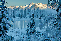 Winter landscape of hoar frost covered trees with a view of Knik River and the Chugach Mountains in the Matanuska Valley near Palmer, Alaska.   Southcentral Alaska<br /> <br /> Photo by Jeff Schultz/SchultzPhoto.com  (C) 2019  ALL RIGHTS RESERVED