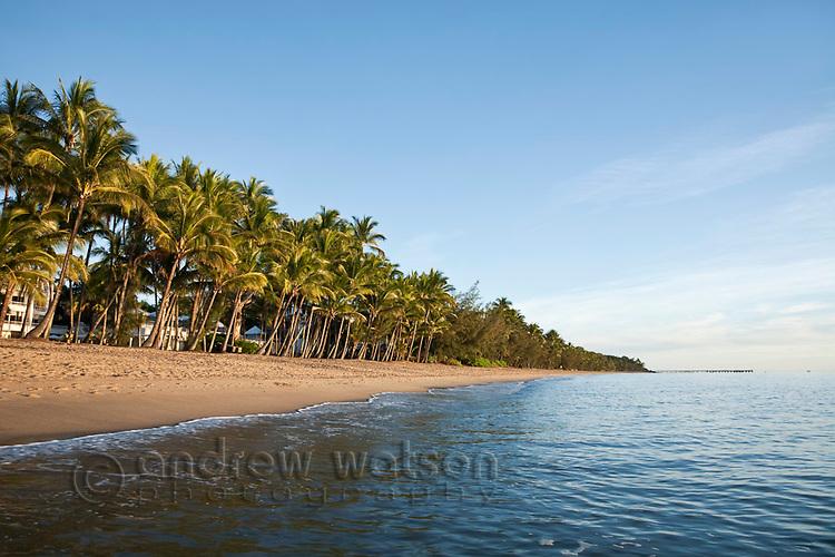 View along Palm Cove beach at dawn.  Palm Cove, Cairns, Queensland, Australia