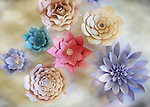 Paper Flowers this photo was taken during my photo walk about in Santa Clarita California on September 10, 2016 @Fitzroy Barrett