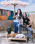 Wagtime Owners Lisa Schreiber and Ofer Khal, DC Magazine