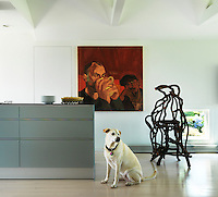Benny the dog sits in the kitchen surrounded by contemporary artwork and sculpture