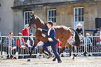 AUS-Christopher Burton (NOBILIS 18) FIRST HORSE INSPECTION: 2016 GBR-Mitsubishi Motors Badminton Horse Trials CCI4* (Wednesday 4 May) CREDIT: Libby Law COPYRIGHT: LIBBY LAW PHOTOGRAPHY
