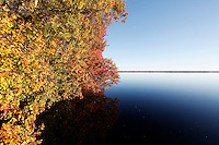 Lake Drummond, The Great Dismal Swamp National Wildlife Refuge, Suffolk, Virginia on November 14, 2010.