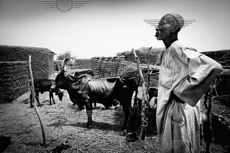 80 year old Alkali Gakoy stands by what remains of his livestock. Weakened by a period of draught, heavy rainfall then caused animals to become stressed causing them to die from heart attacks.