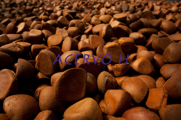Produ&ccedil;&atilde;o de andiroba.<br /> Moj&uacute; Miri, Moj&uacute;, Par&aacute;, Brasil.22/06/2011<br /> Foto Paiulo Santos